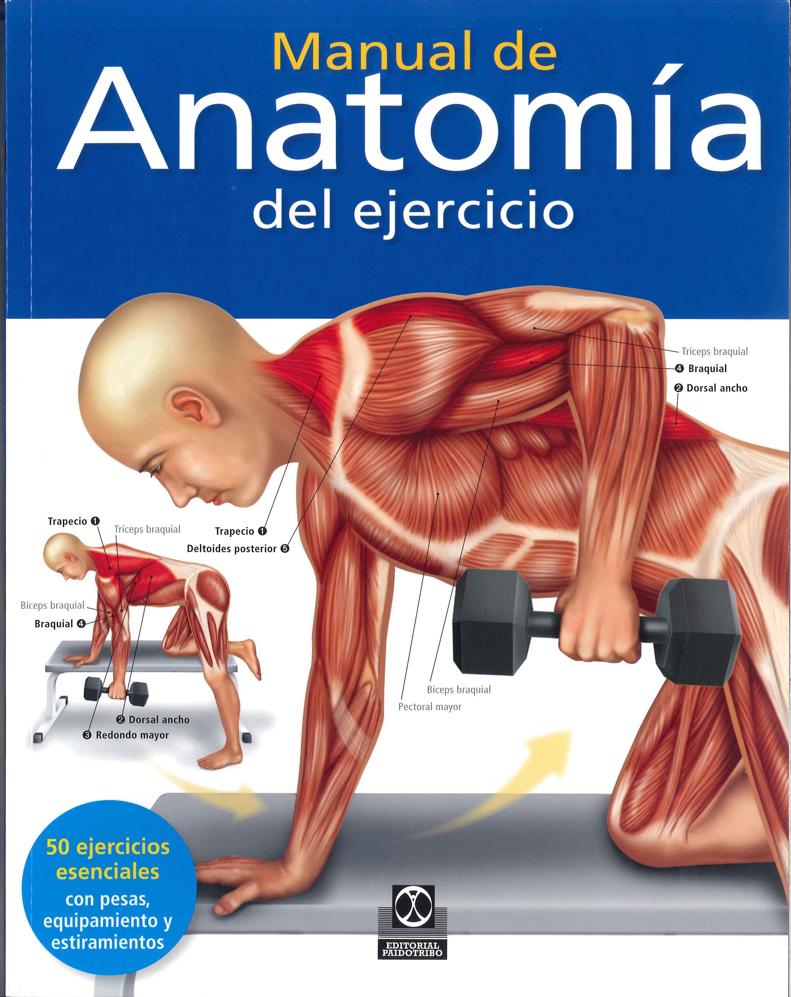 MANUAL DE ANATOMÍA DEL EJERCICIO